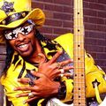 Bootsy-collins-a01