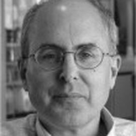 Charles Stein Headshot