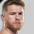 Fighter-profile-image-canelo