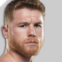 Fighter-profile-image-canelo
